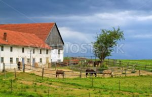 Traditional red tiled roof farm house with horses in Bavaria, Germany - GlobePhotos