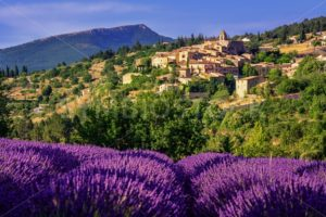 Aurel town and lavender fields in  Provence, France - GlobePhotos - royalty free stock images