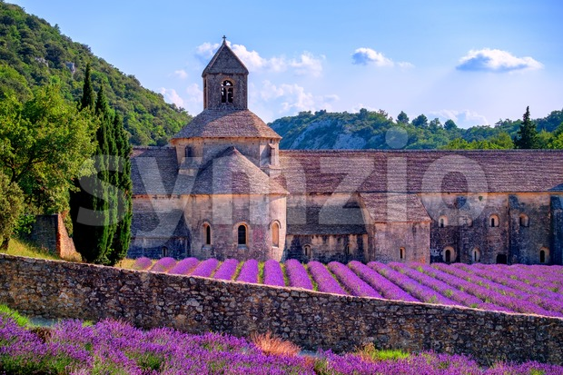 Lavender fields at Senanque monastery, Provence, France Stock Photo