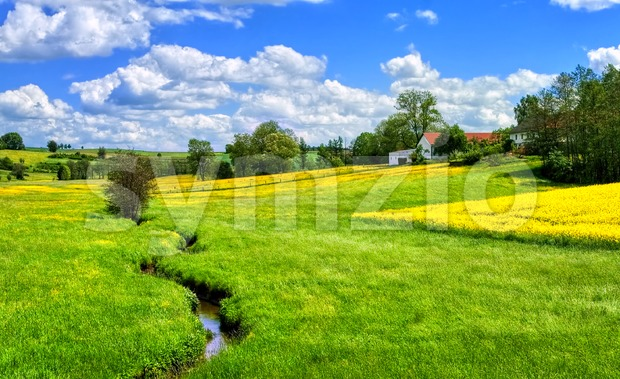 Green meadow and yellow canola fields in Bavaria, southern Germany