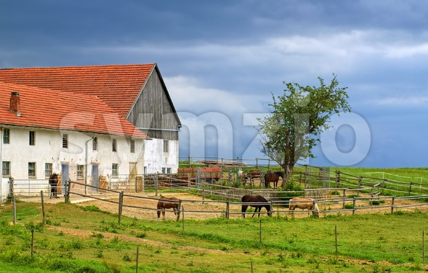Traditional red tiled roof farm house with horses in Bavaria, Germany Stock Photo