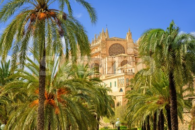 La Seu, medieval gothic cathedral, Palma de Mallorca, Spain Stock Photo