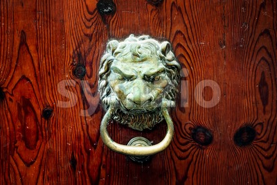 Decorative bronze lion head door knob Stock Photo