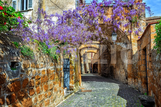 Narrow street in historical Old town of Orvieto, Umbria, Italy, decorated with blooming wisteria flowers