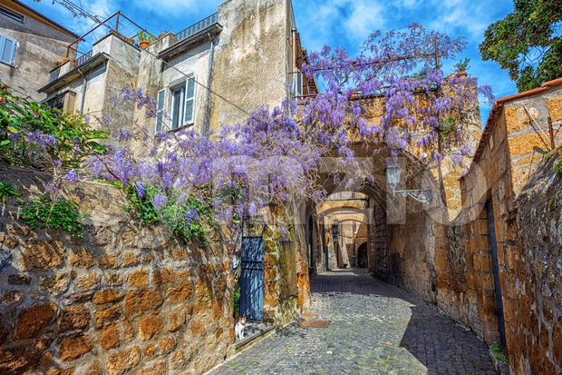 Historical street with blooming wisteria flowers, Orvieto, Italy Stock Photo