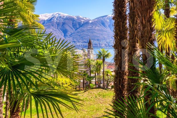 Palm tree garden in Ascona town on Lago Maggiore lake, Locarno, Switzerland Stock Photo